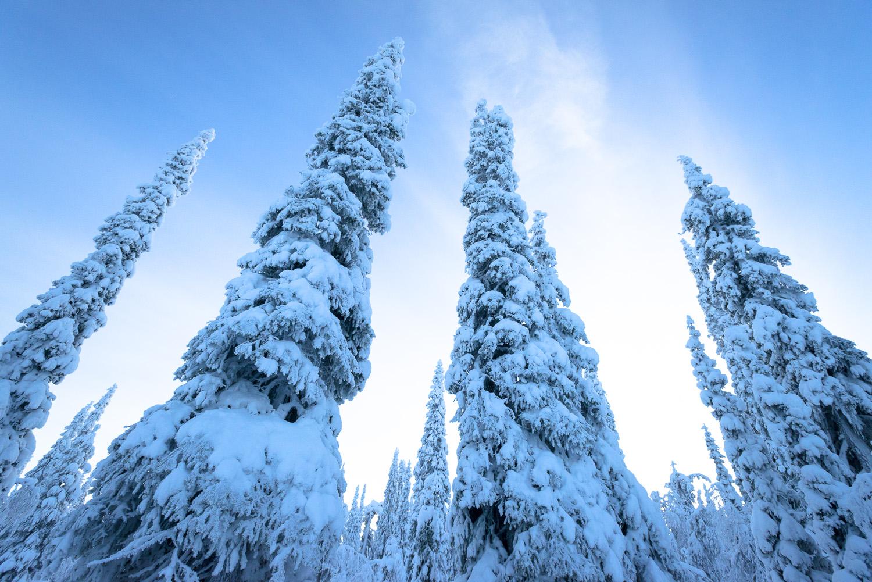 Lapland-016.jpg
