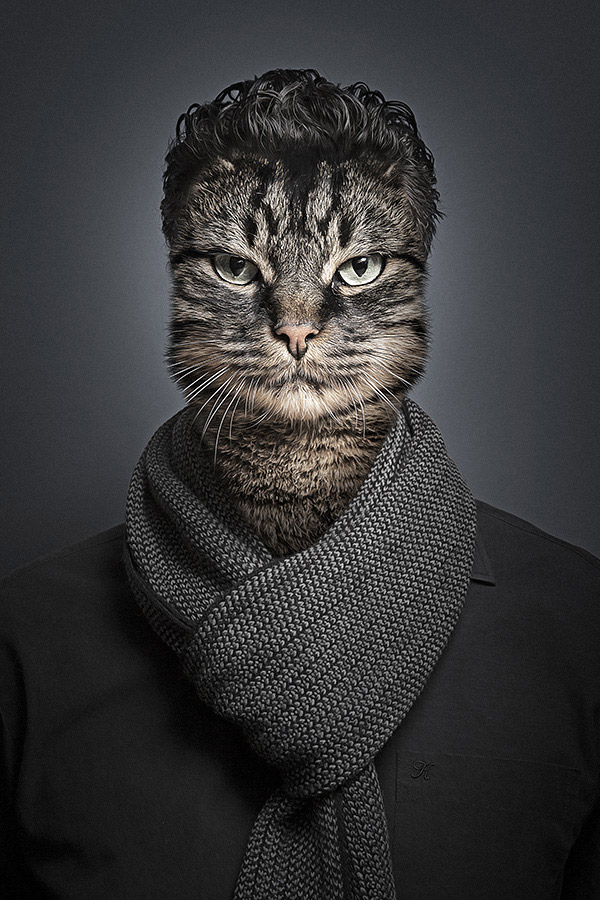 Undercats-Cats-Dressed-as-Their-Owners-are-a-Lot-of.jpg