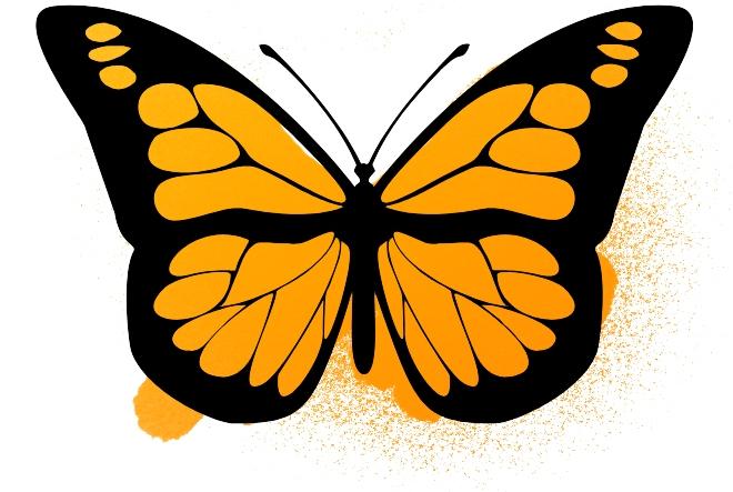 Butterflies_2.jpg