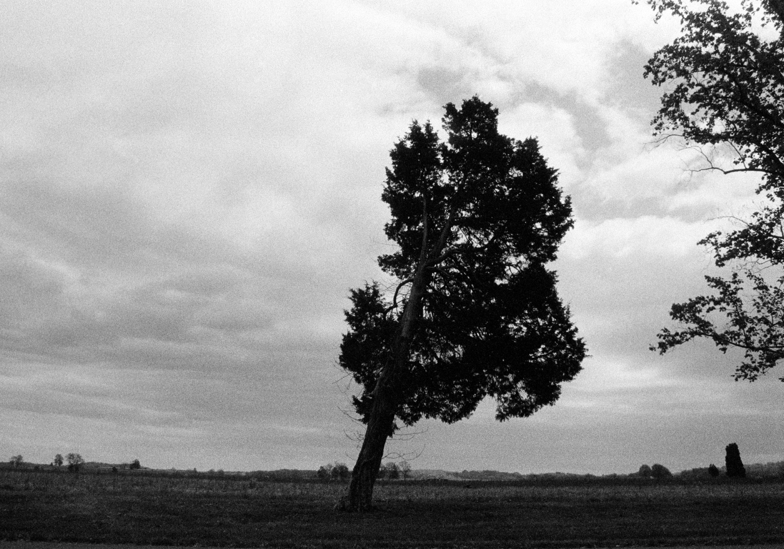 Landscape 10, Gettysburg, PA