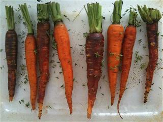 CarrotAndThyme.png