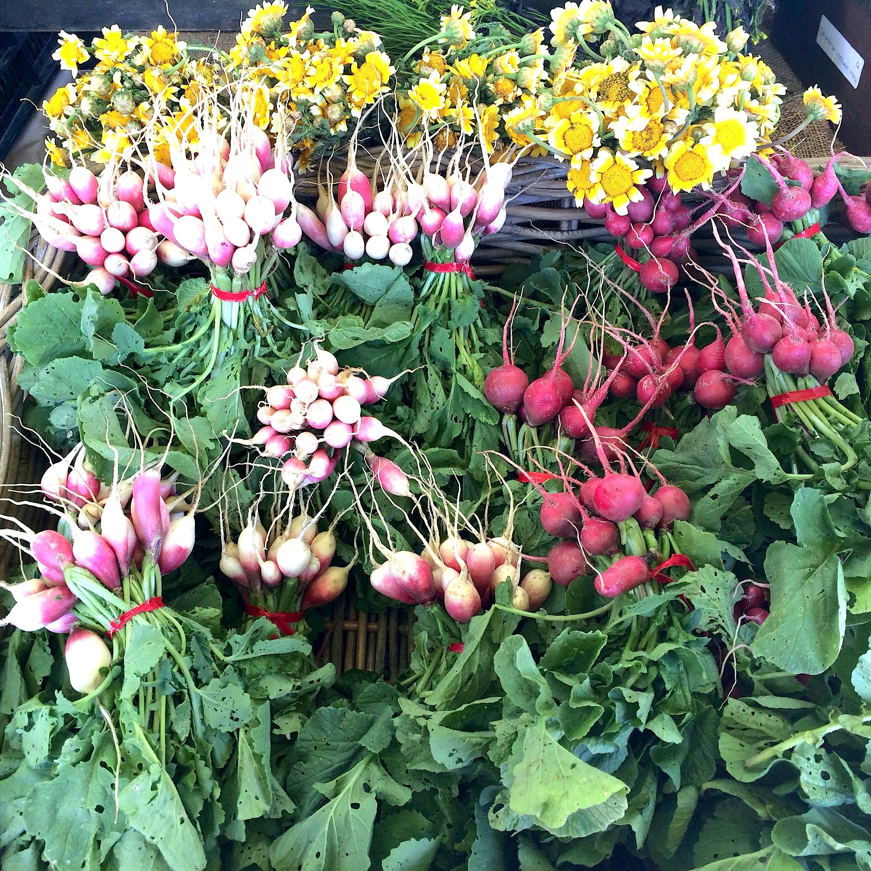 Produce from  Marin Roots Farm .