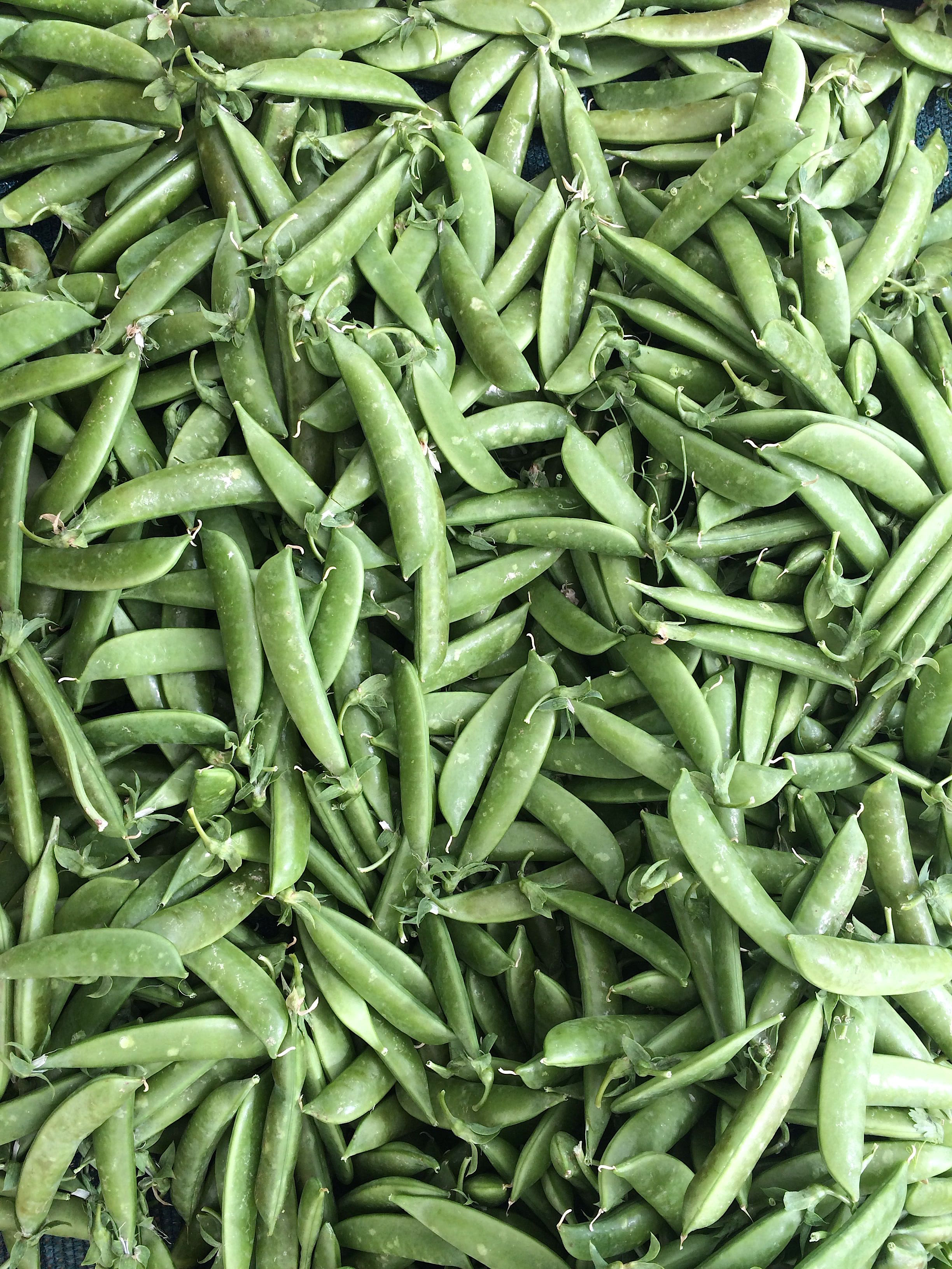 This season, snap peas have been wonderfully sweet and crunchy - these from Happy Boy Farm at the Berkeley Farmers Market.