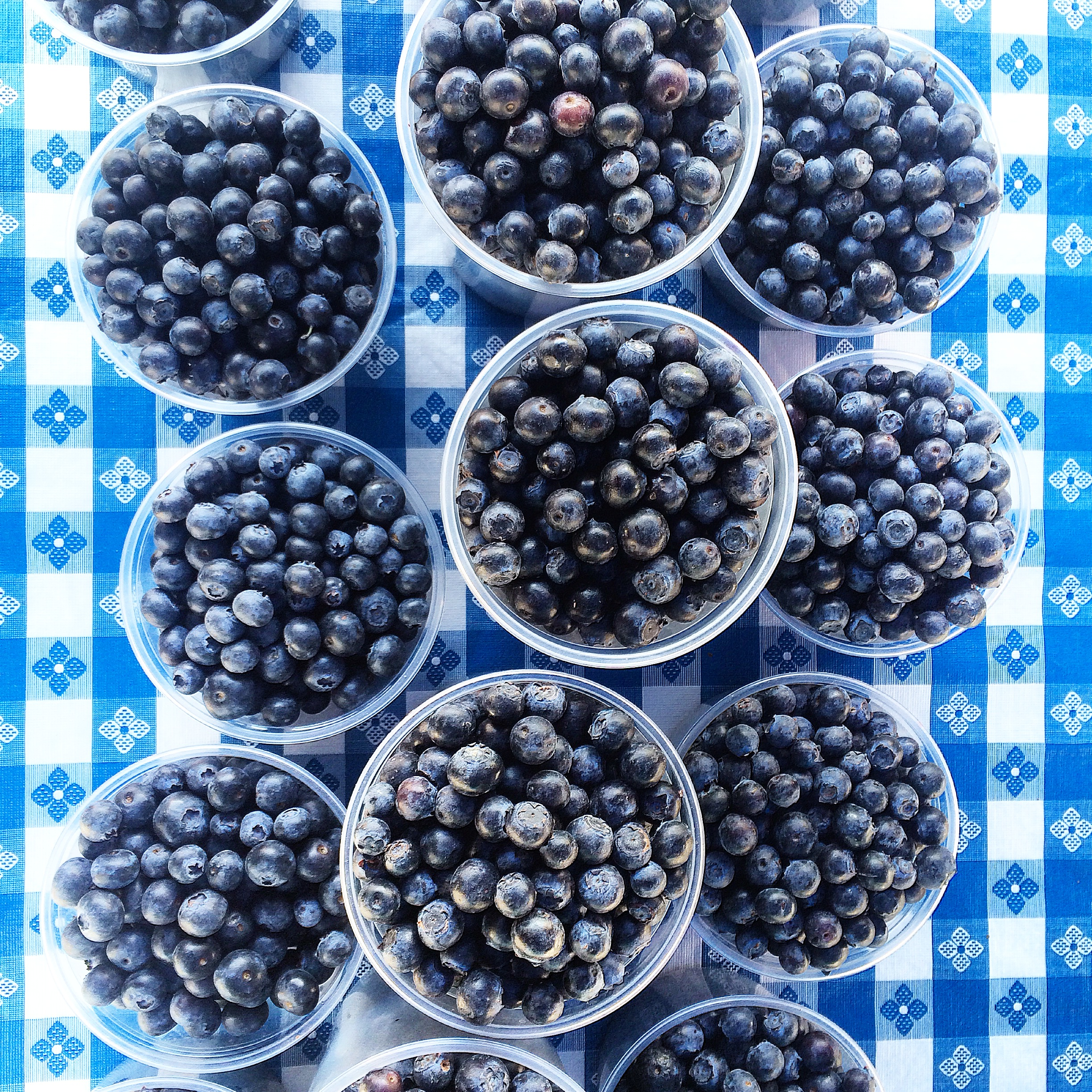 First blues of the Season at the Berkeley Farmers Market. These from Triple Delight never fail to ... delight! :)