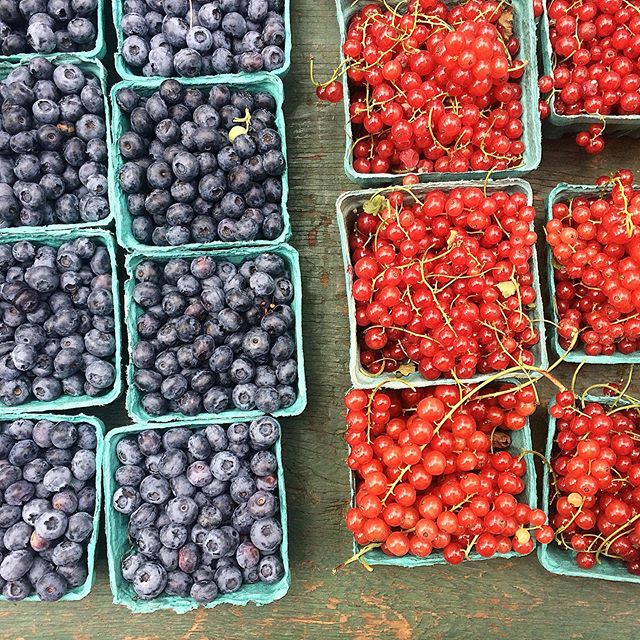 #Humpday happiness : munching on more #nyc #farmersmarket faves for this #summer. 😋 The blues are sweet and refreshing on these hot days, but still a tad tart too, so also good candidates for a quick stew/compote with a little maple syrup to ease the tanginess. ☀️💙❤️#summerdelights