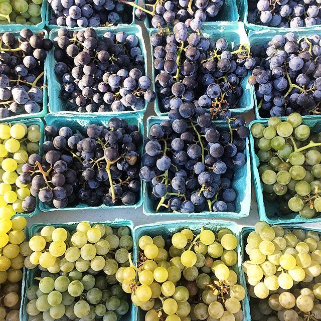 When the week ends and feels just right... A beautiful display of colors and Concord grapes at the #farmersmarket for a beautiful sunny #Fall day... 💛💜 #happyfriday !