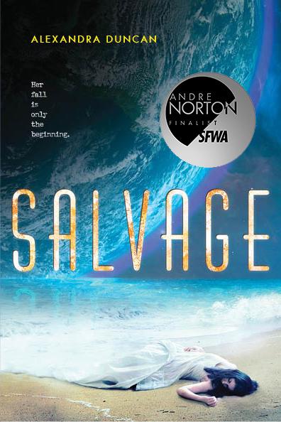 SALVAGE Norton.jpg