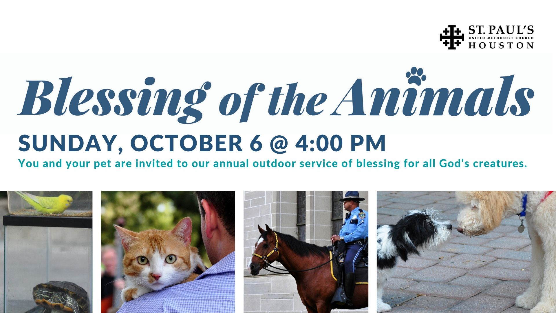 16x9 Blessing of the Animals 2019.jpg