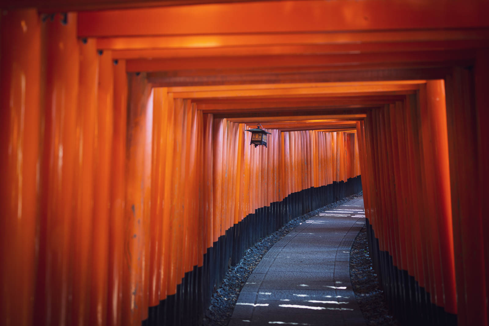 Fushimi Inari-taisha Torii