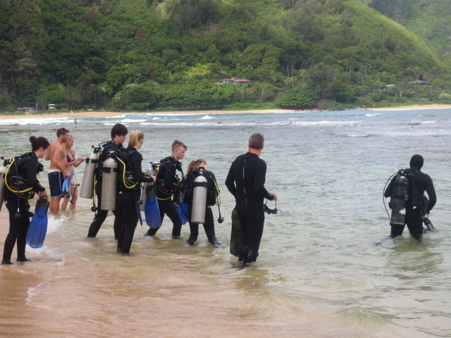 Going for their first dive