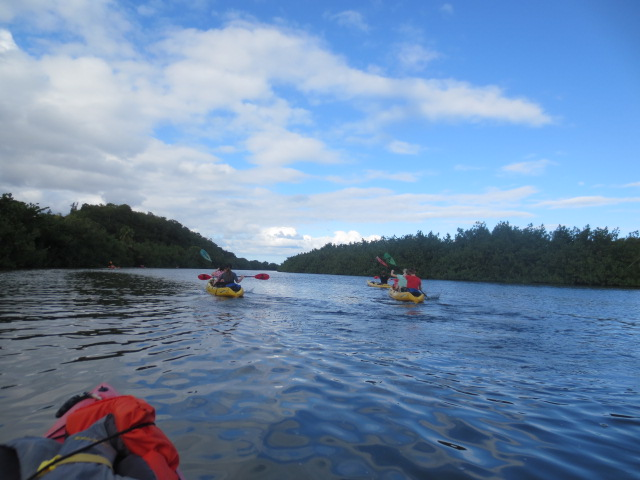 The beautiful Wailua river was our playground for kayaking