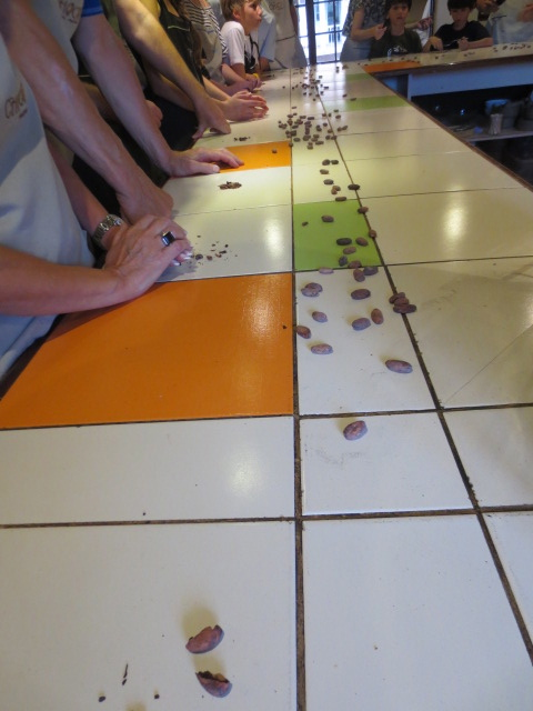 We learned about the process and got to taste dried beans