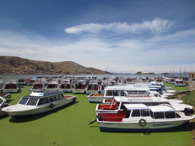 "This is the ""Puerto Banus"" version in Puno"