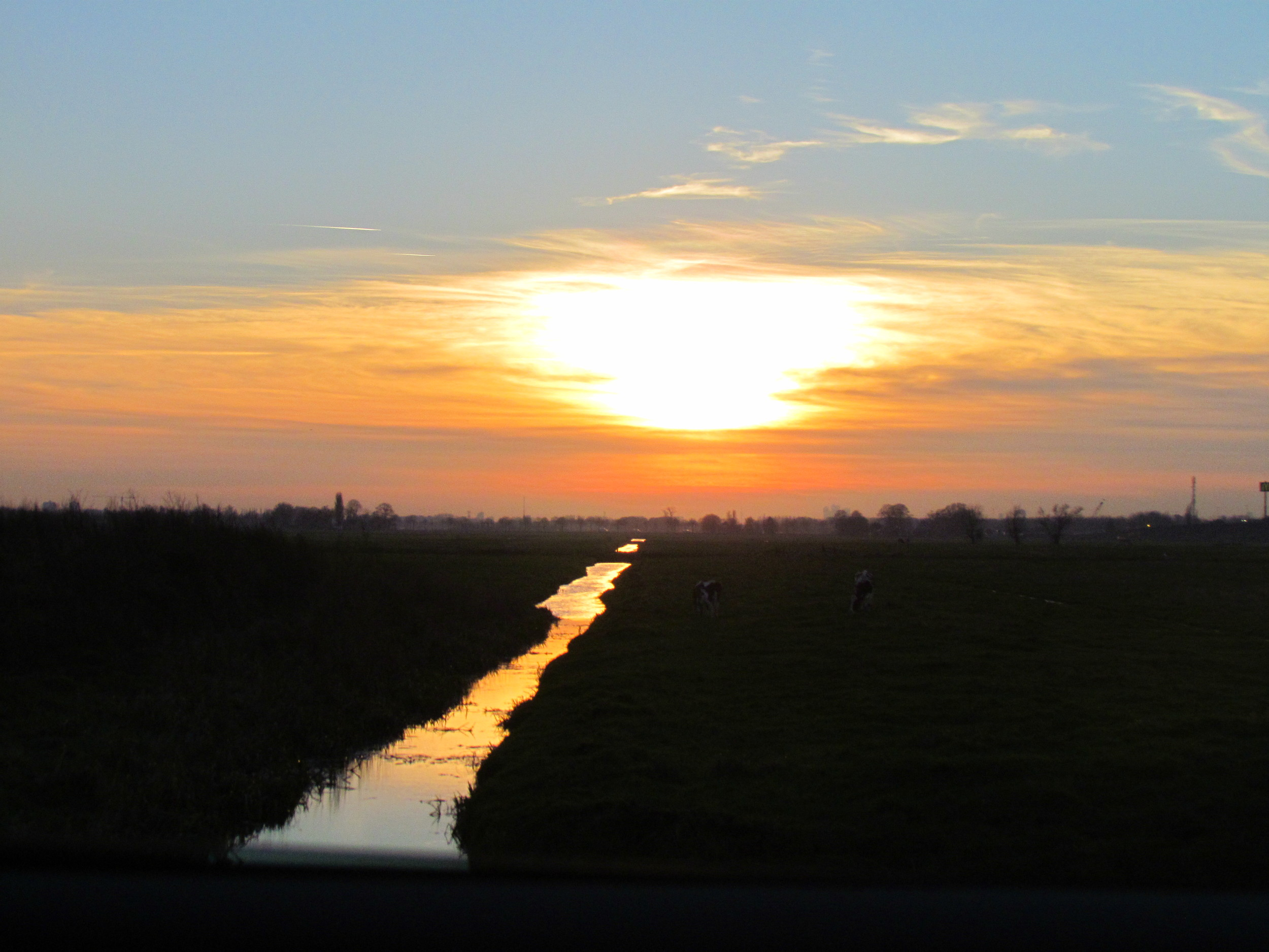On our way back from Gouda - typical Dutch landscape