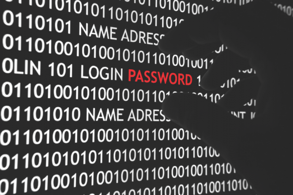 PasswordSecurity - Brute Force Attempts and Password Changes