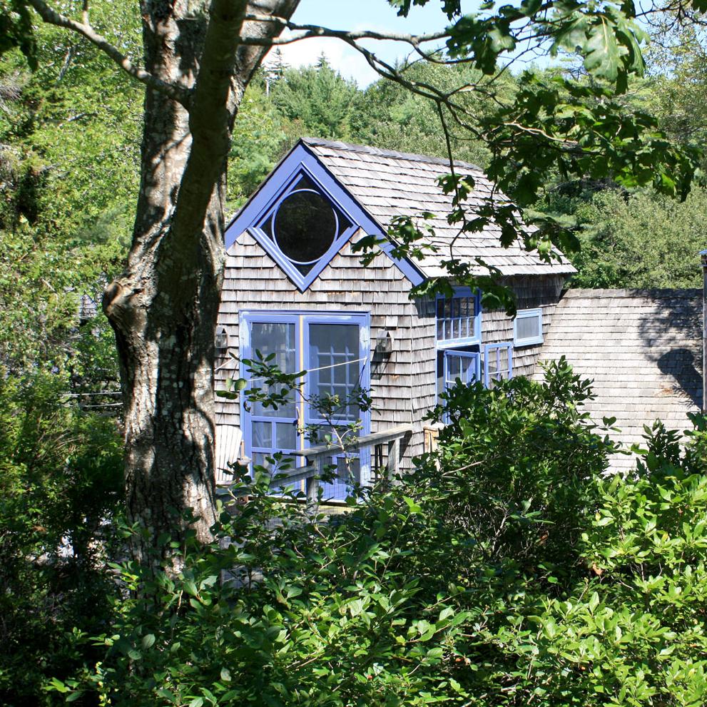 house_woods.jpg