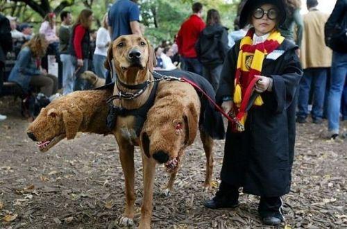 kids-halloween-costumes-3.jpg