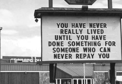 246-you-have-never-really-lived-1-a1fd2750-sz500x345-animate.jpg