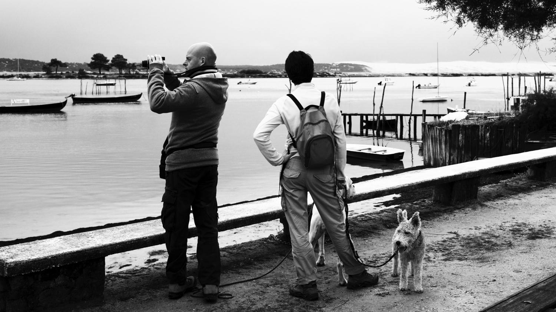 Une vie de chien ! © Thierry Lothon 2013