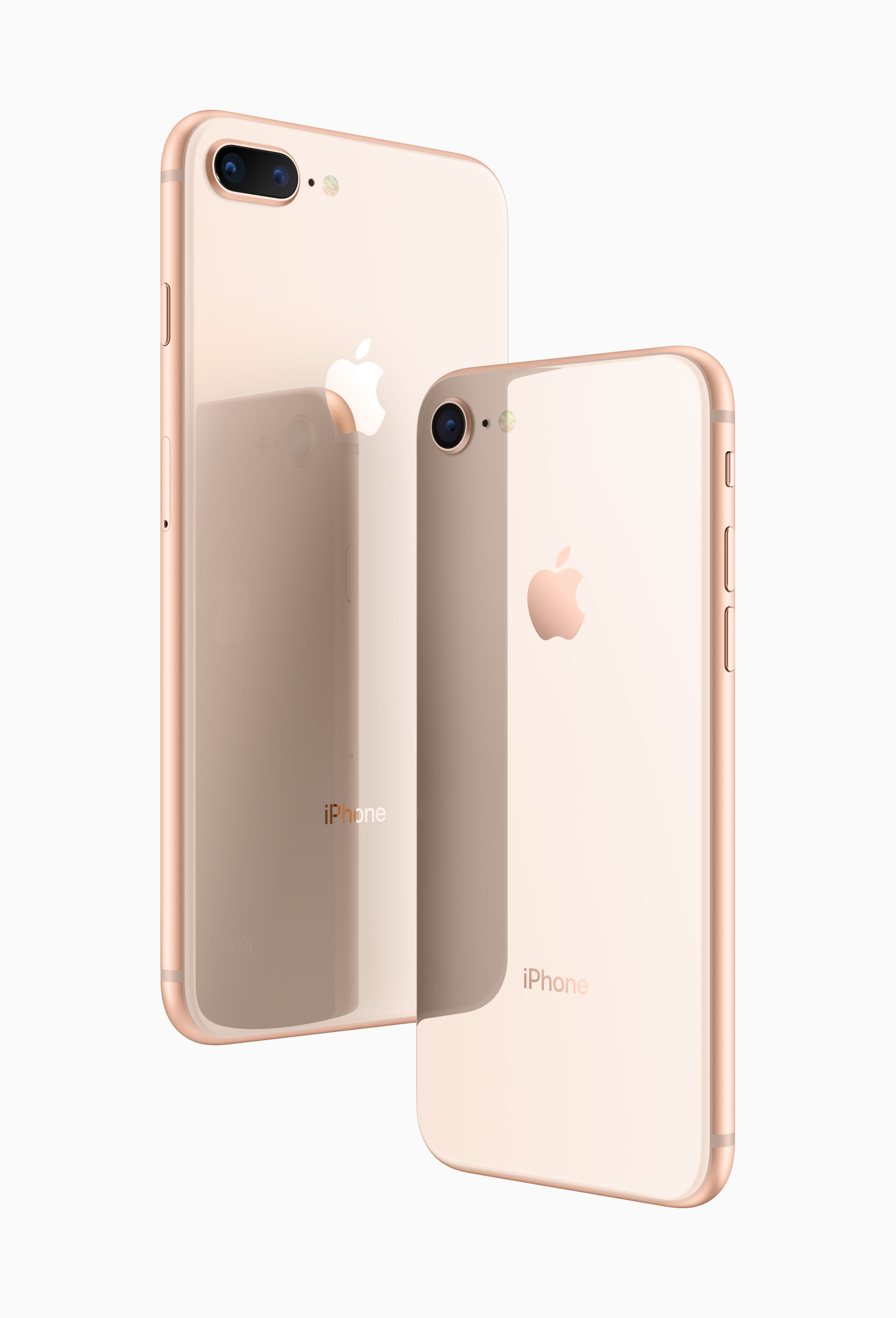 8plus_and_8_glass_back.jpg