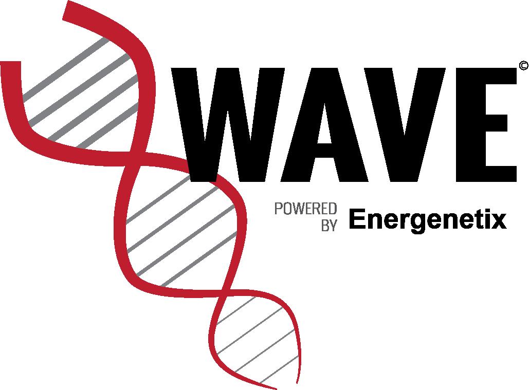 Wave logo 3.png