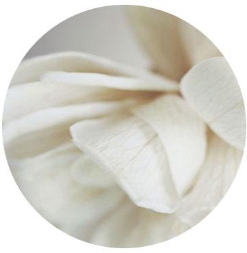 flower_round.jpg
