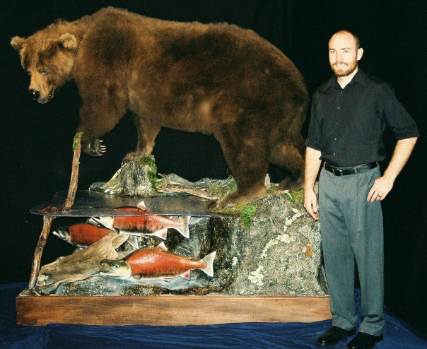 Taxidermy - Grizzly with sockeye salmon