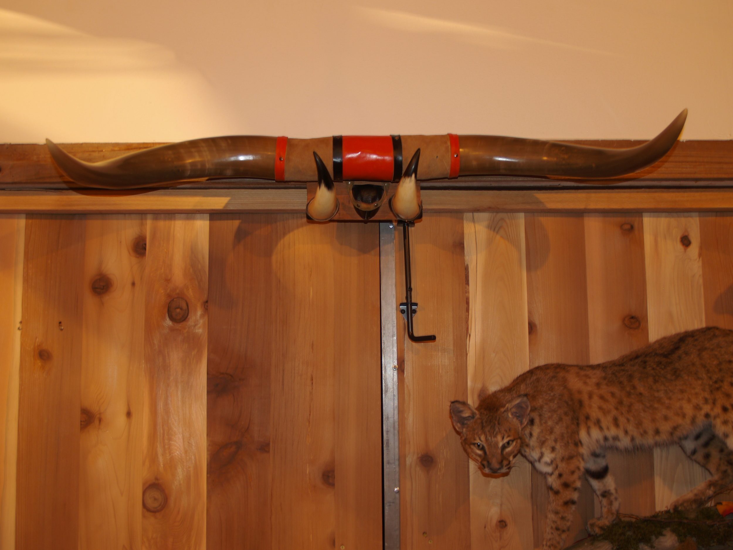 Longhorn Repair