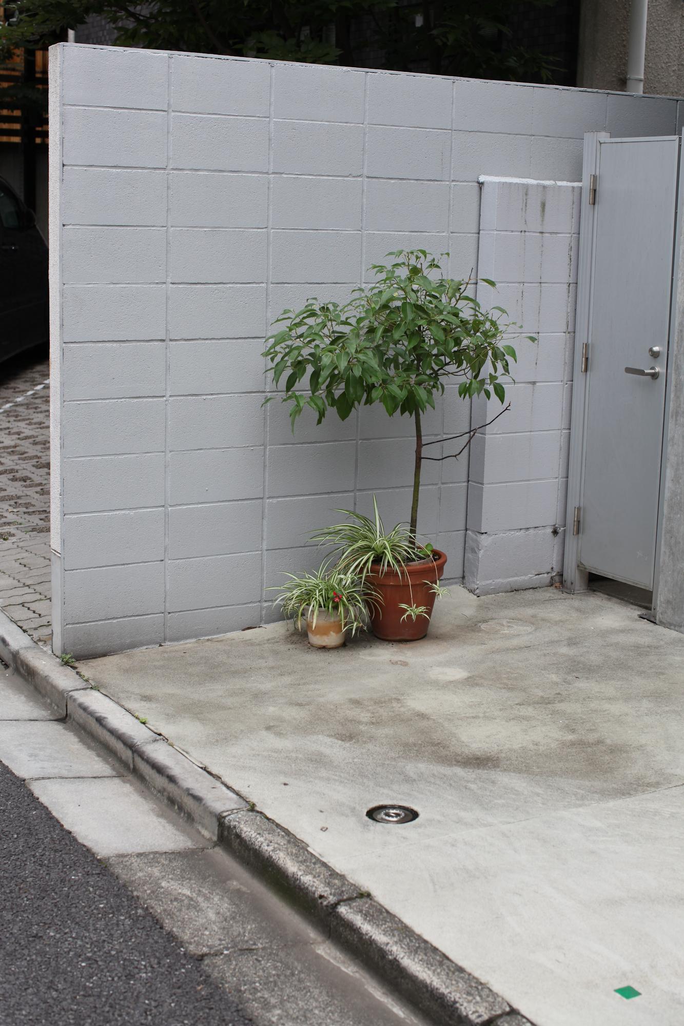 tokyo-4765.jpg