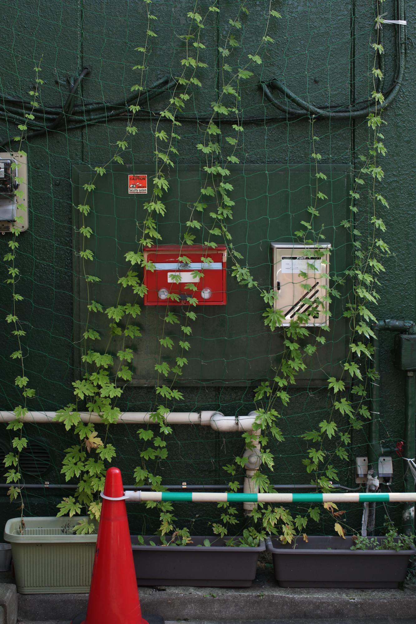 tokyo-4842.jpg