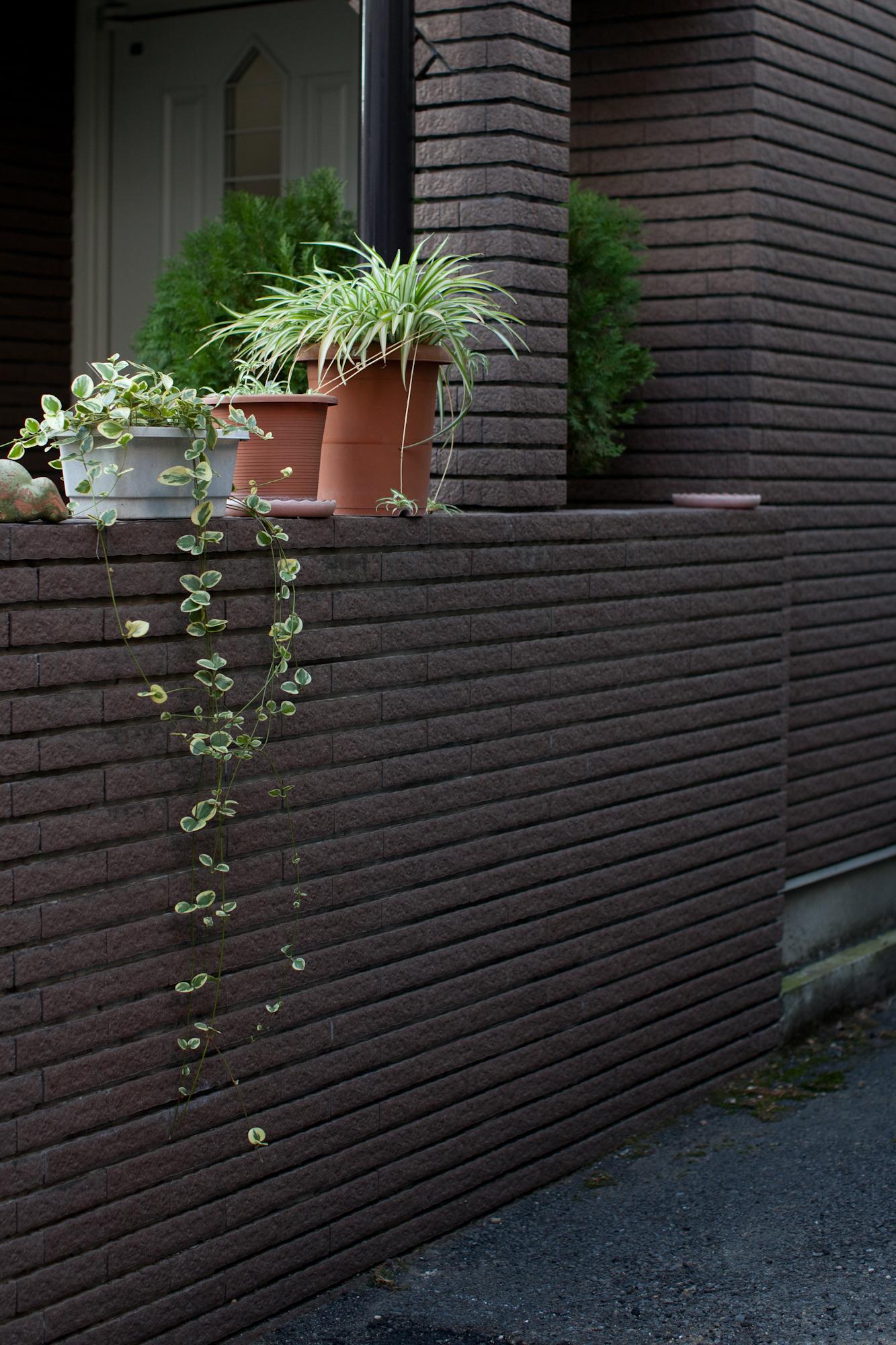 Tokyo-0246.jpg
