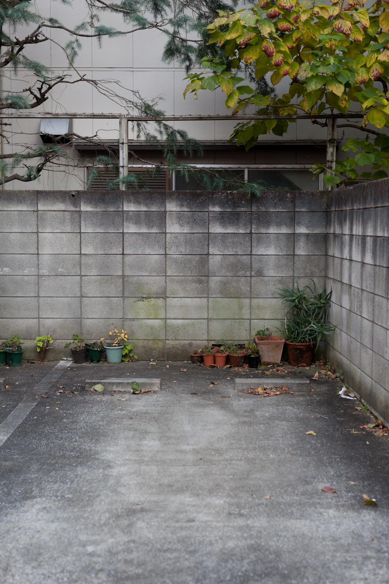 Tokyo-0291.jpg