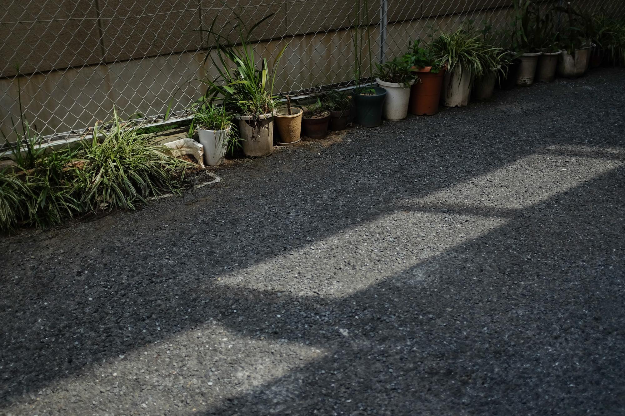 Tokyostreetgardens-3132.jpg