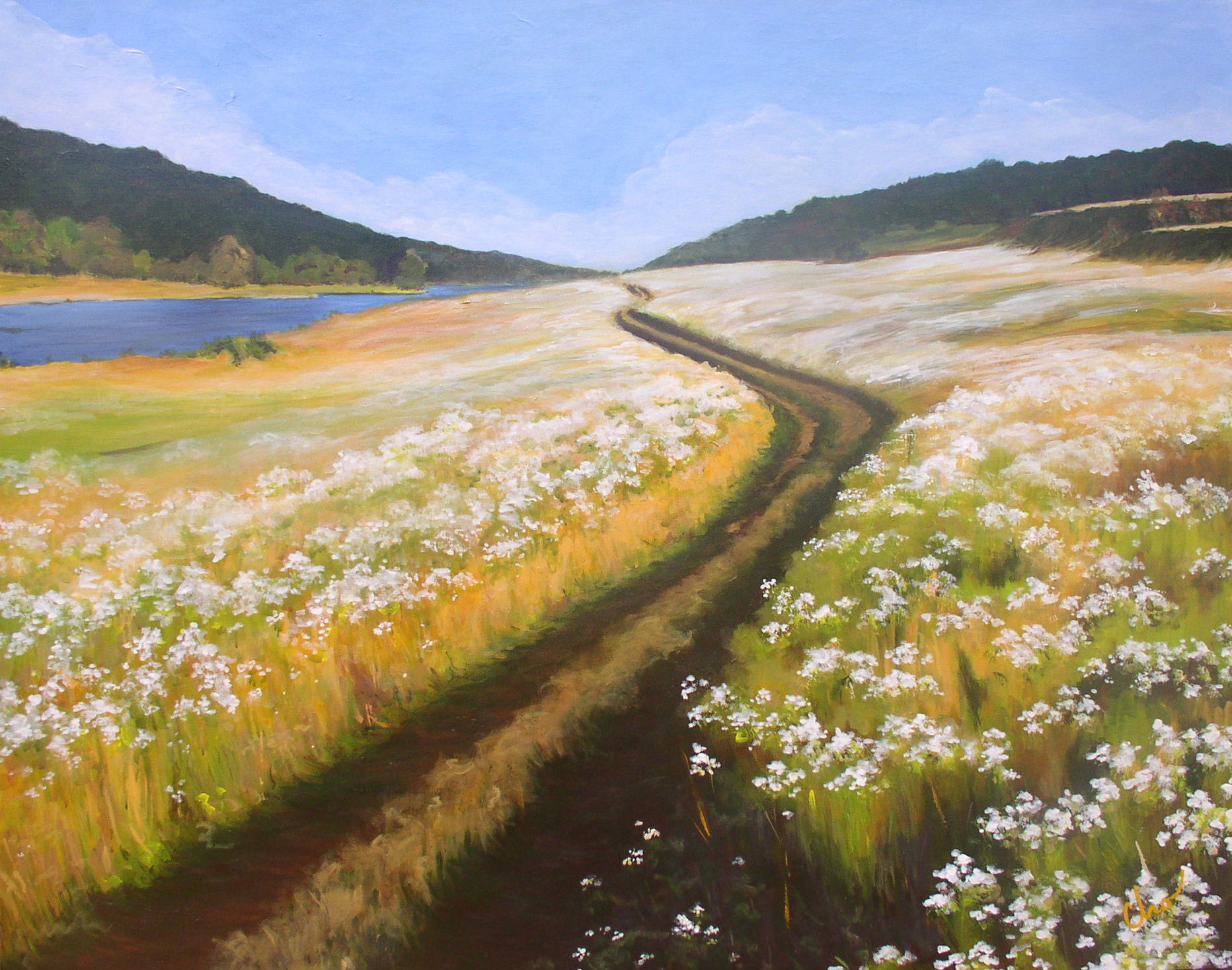 White Meadow--24x30 Sept2009-- $350