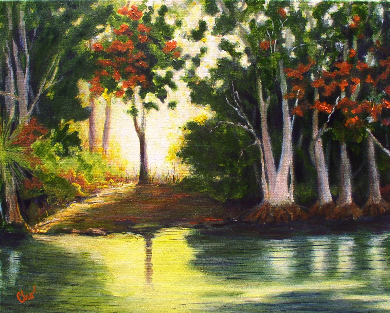 Swimming with Manatees 16x20 July 2011-- $150