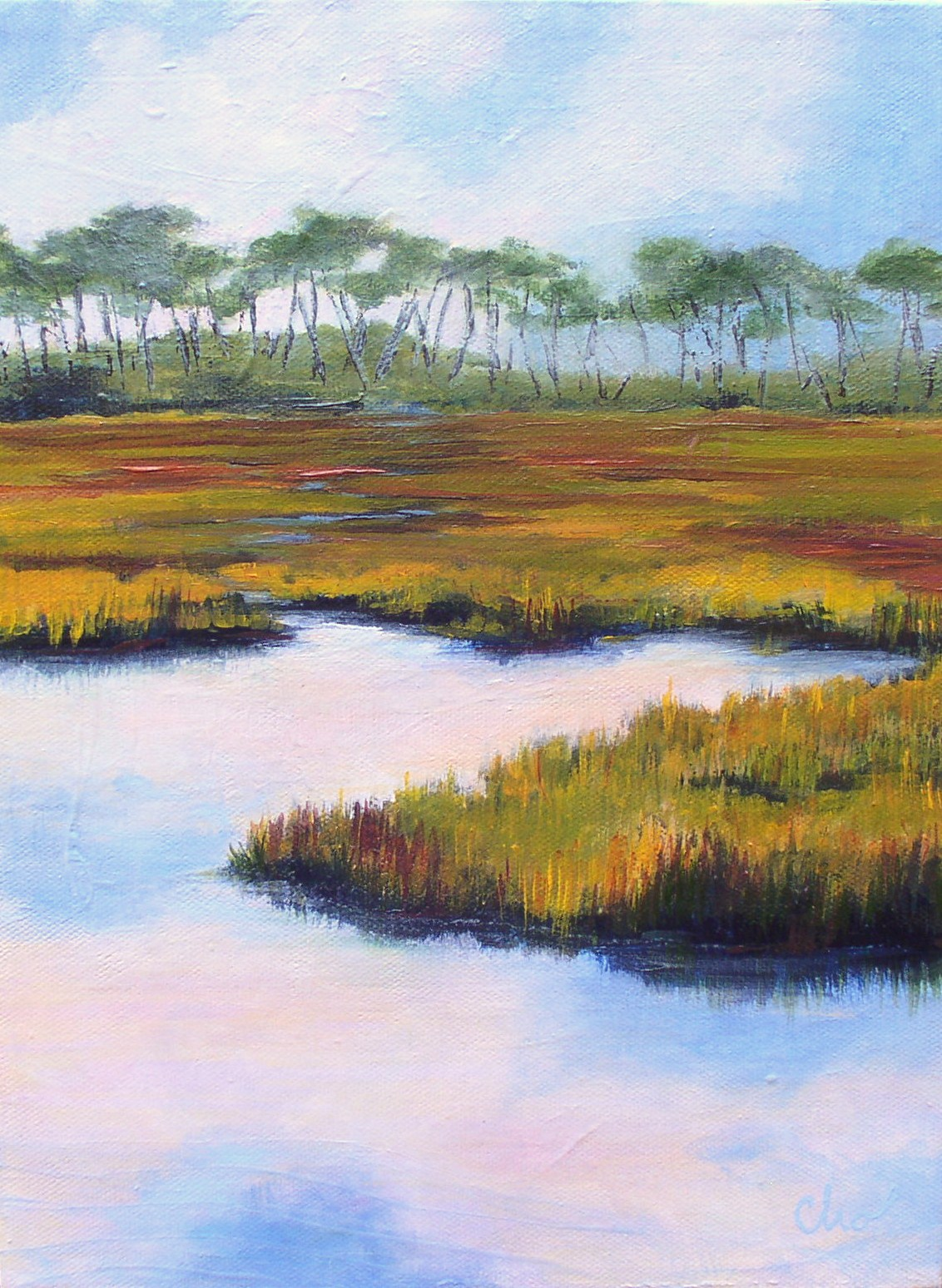 Simmons Bayou (No. 5) 16X12 Oct 2011.JPG