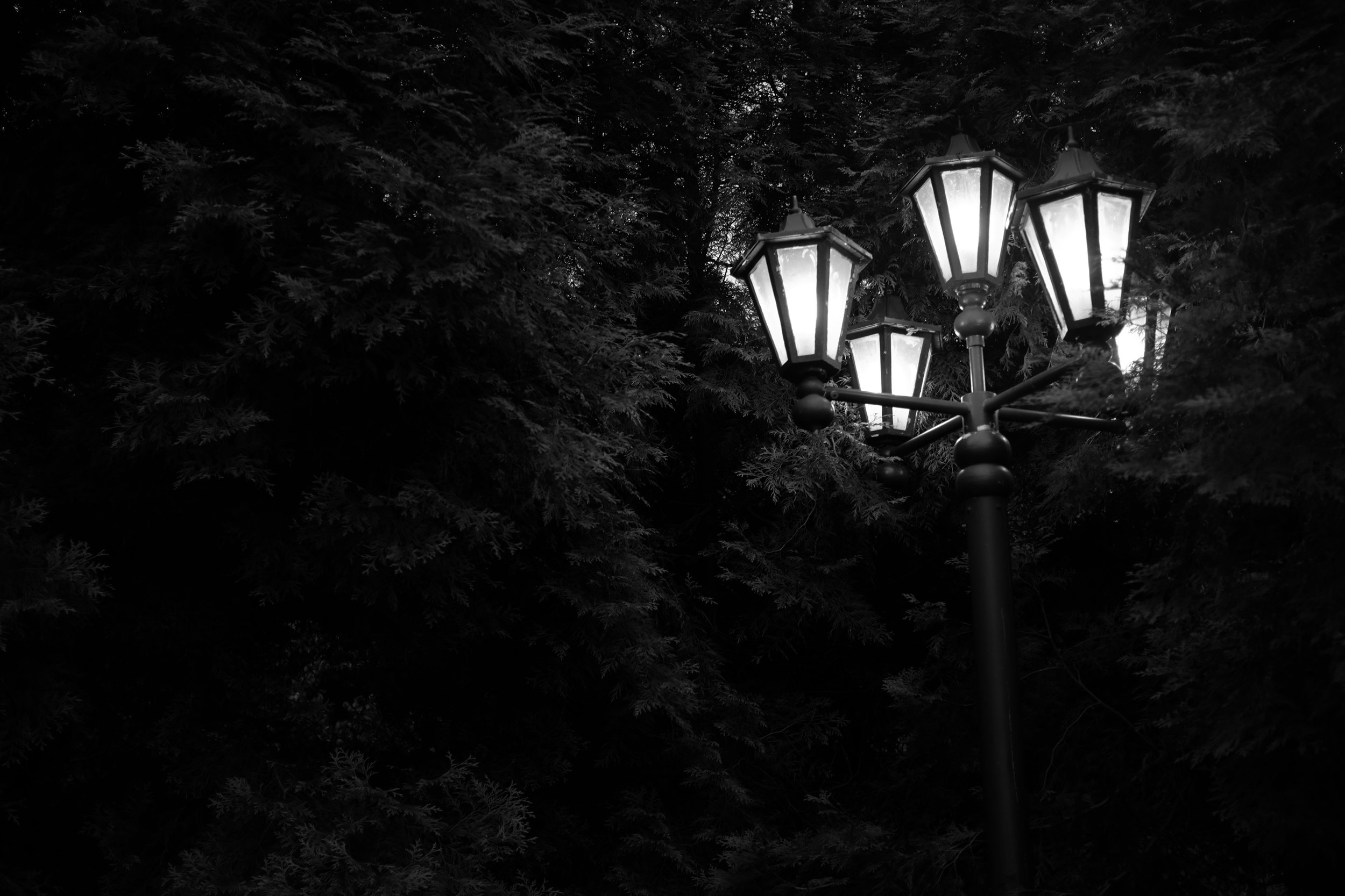 LampPostcard.jpg