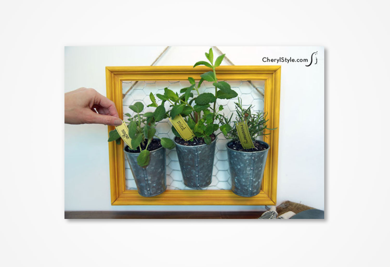 cs-window-frame-herb-garden.jpg