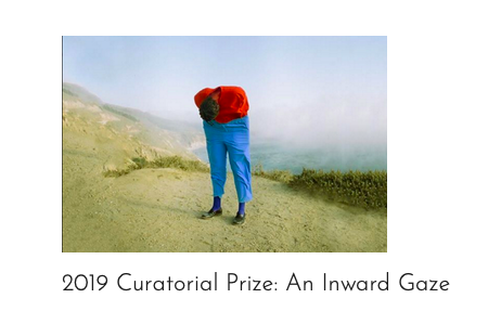 Blue Sky Curatorial Prize: An Inward Gaze   co-curated with Roula Seikaly Bluesky Gallery. Portland, OR. May 2019