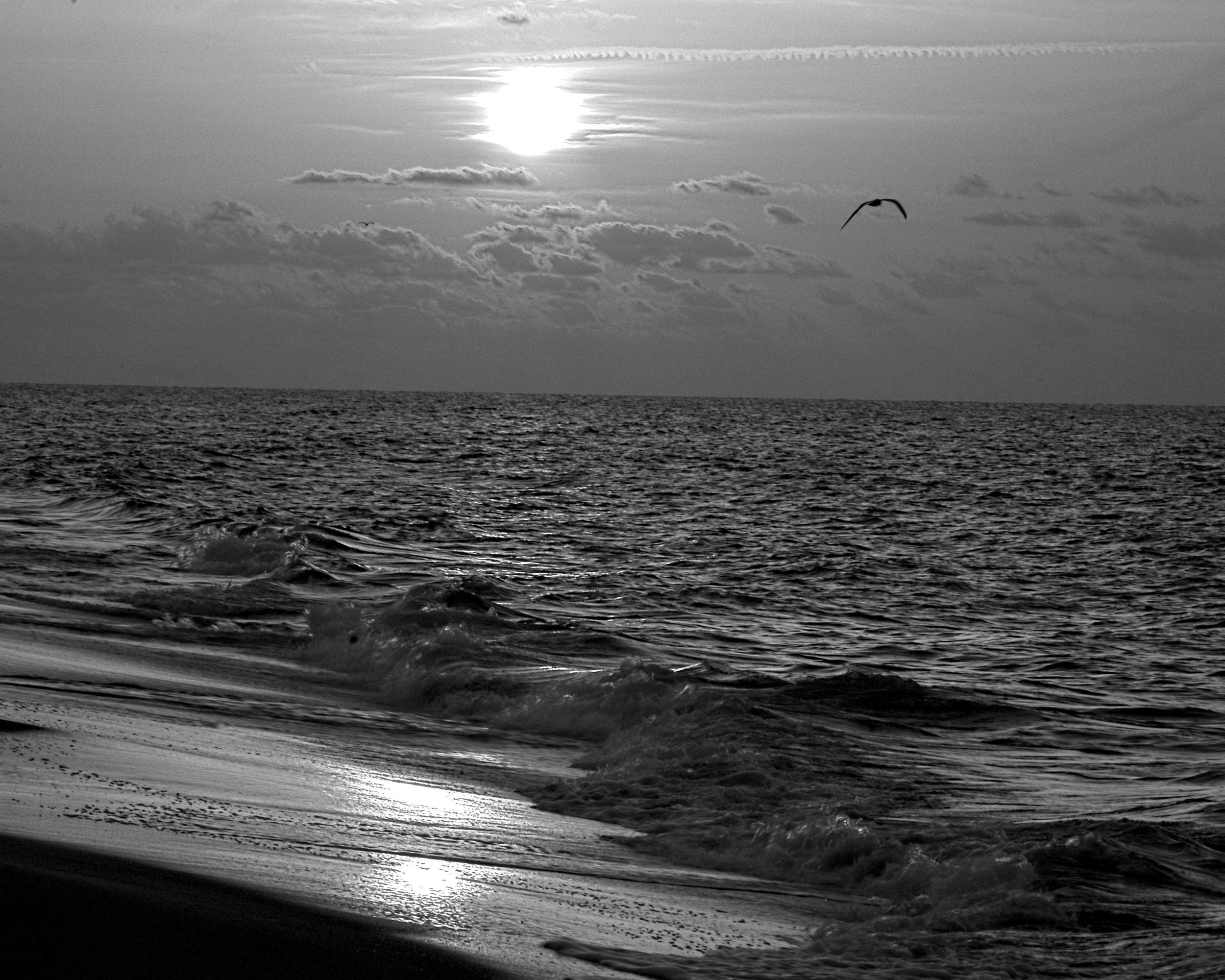 """Photographer: Bill Carroll, """"Dawn Light"""""""