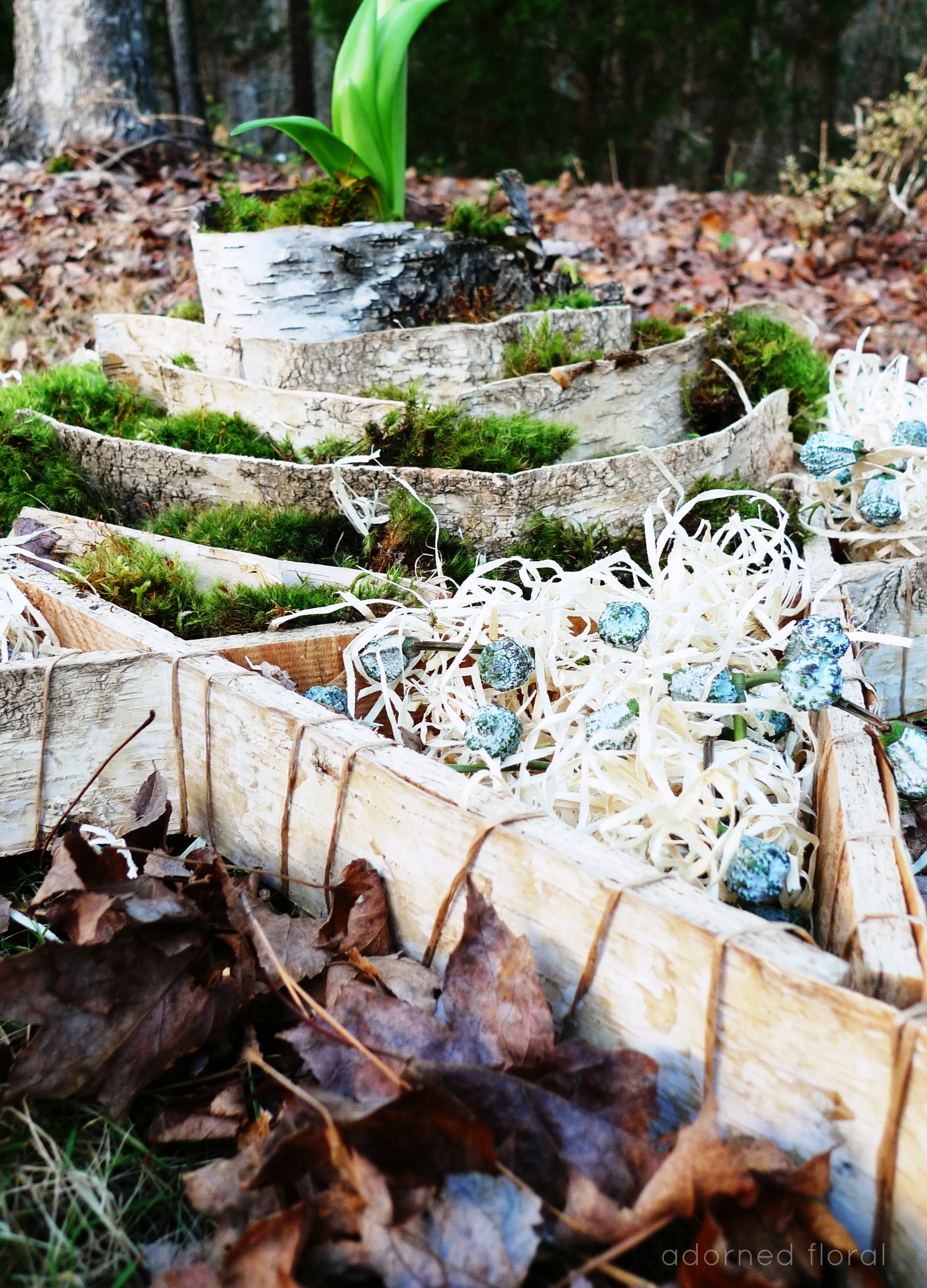 from the stump of Jesse...                                                Heather Metcalf II Adorned Floral ©