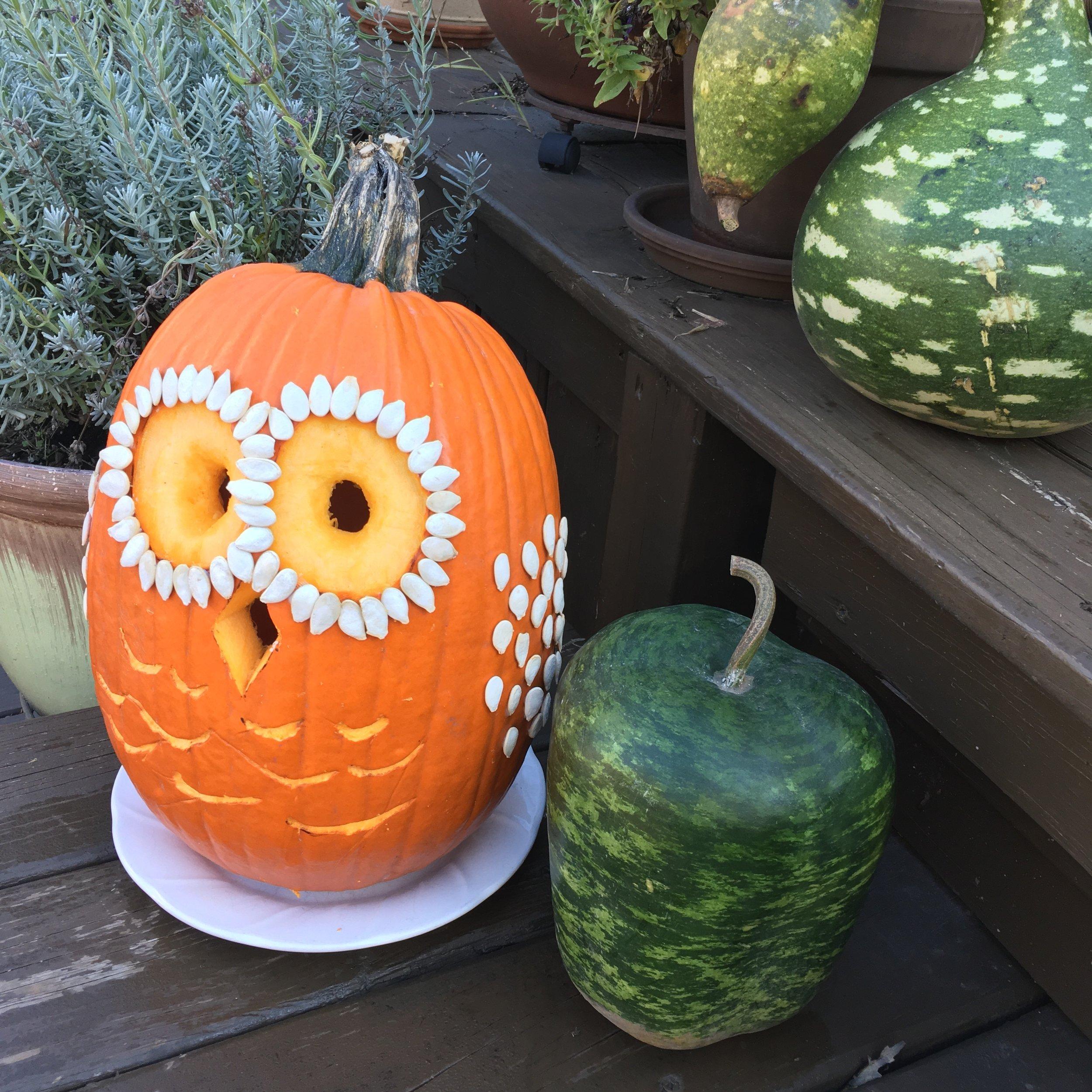 My Real Pumpkin Owl Design