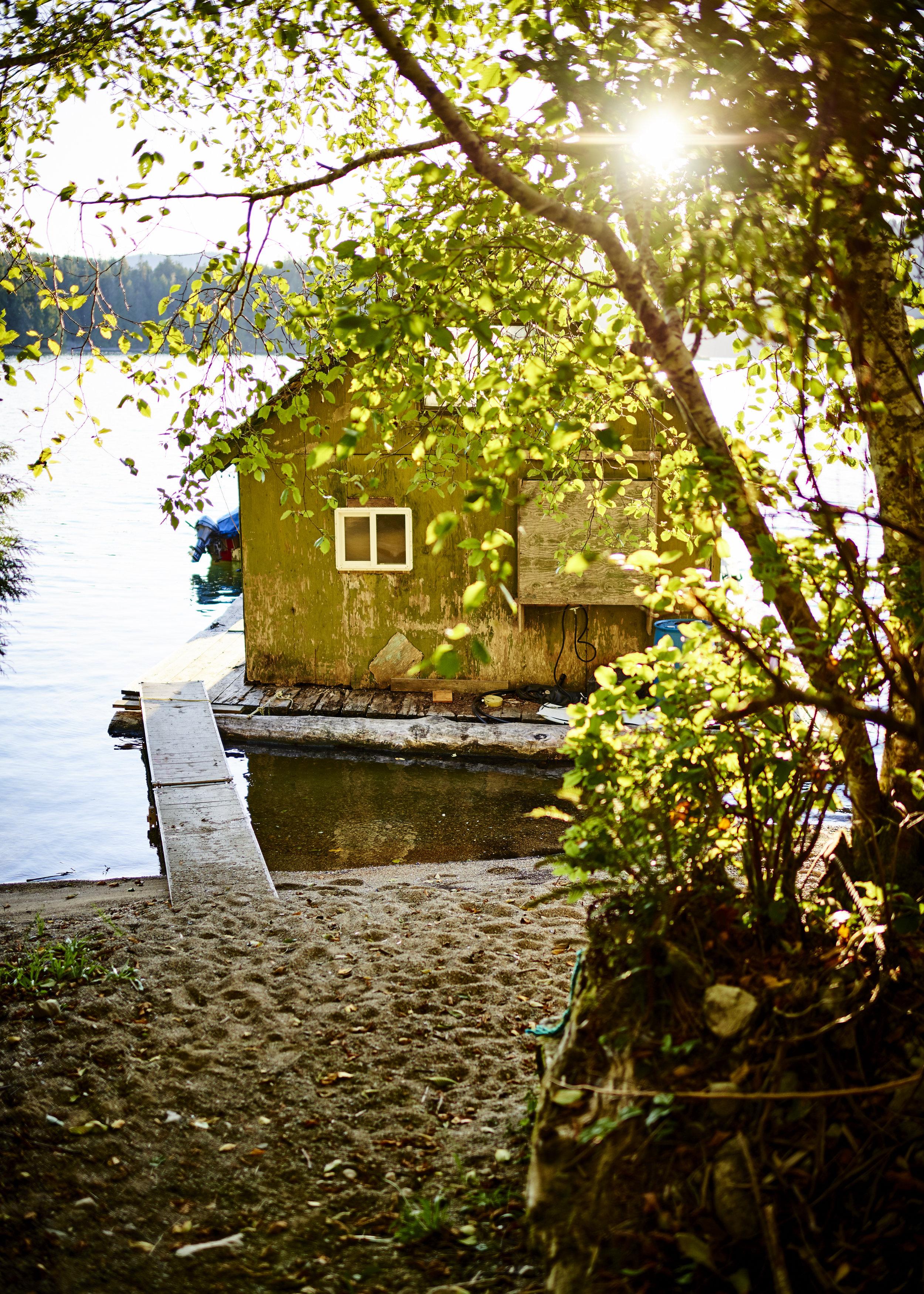 Delaine's Cabin