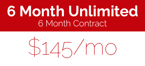 6 month unlimited.png