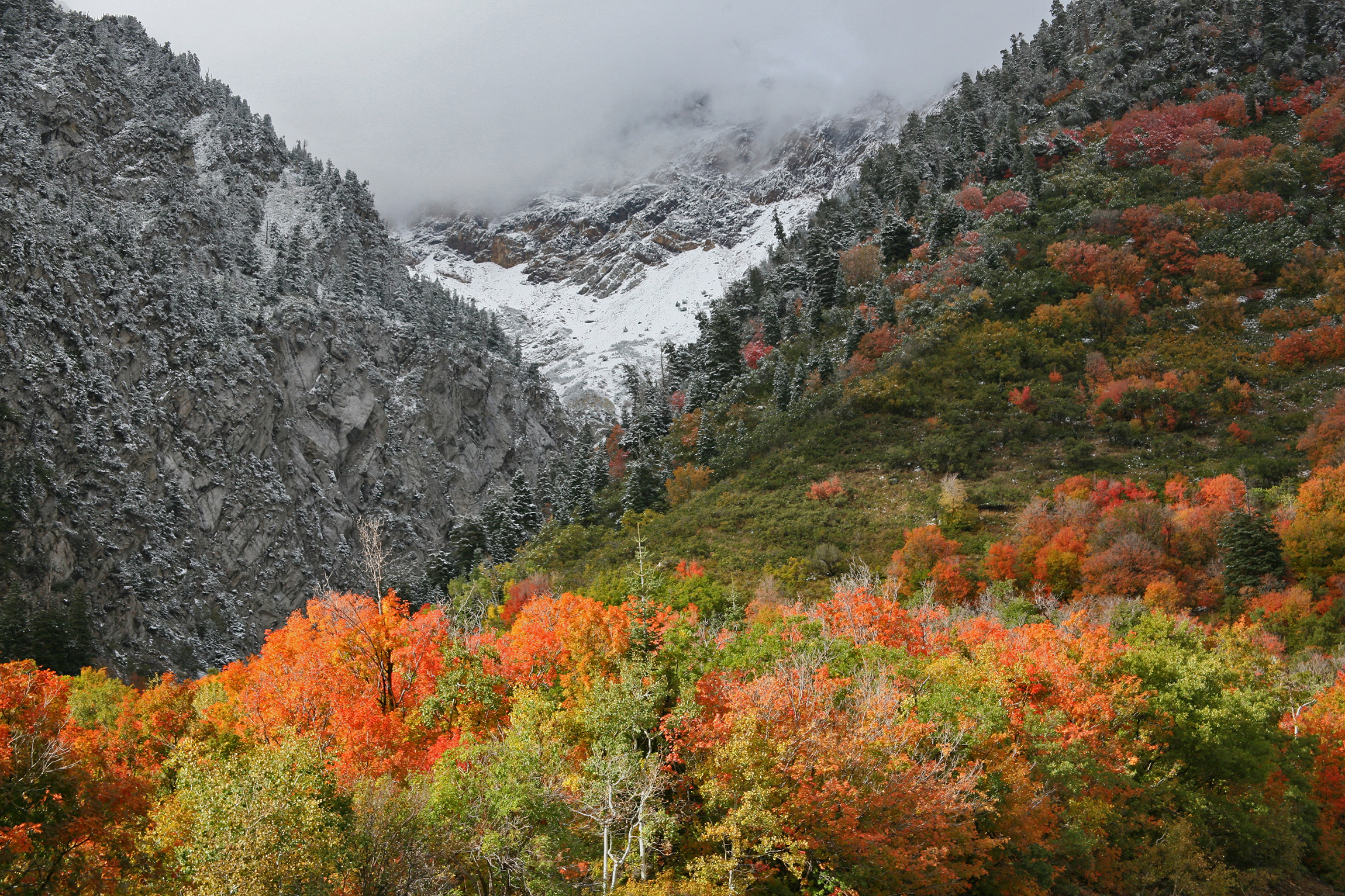 The first snow of Autumn in Little Cottonwood Canyon