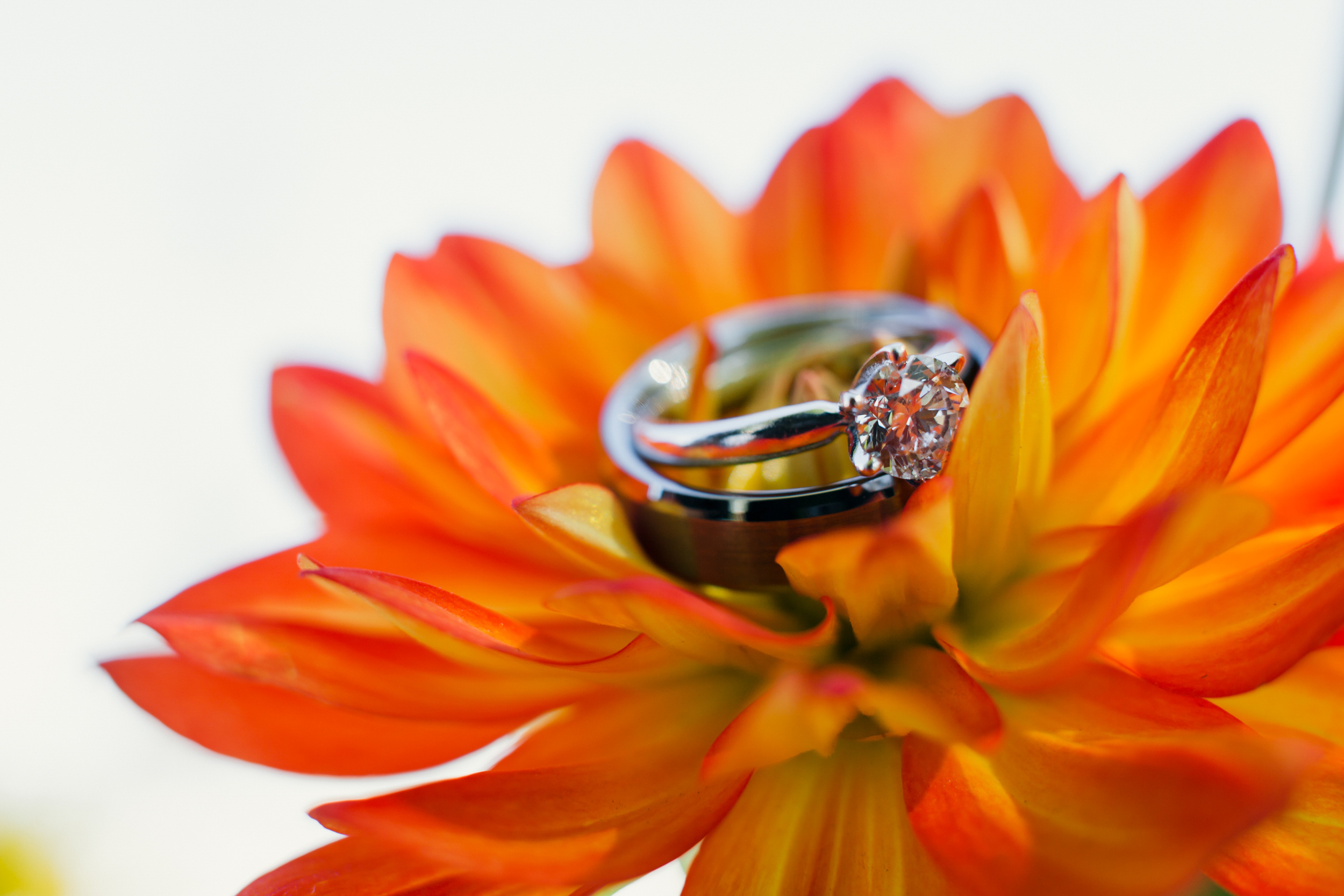 vorhees-wedding-blog-05.jpg