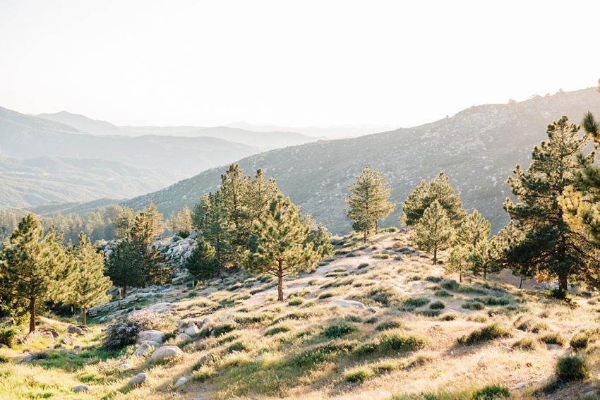 idyllwild-mountain-engagement-photography_0020.jpg