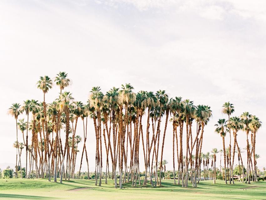 palm-springs-wedding-photography_0001.jpg