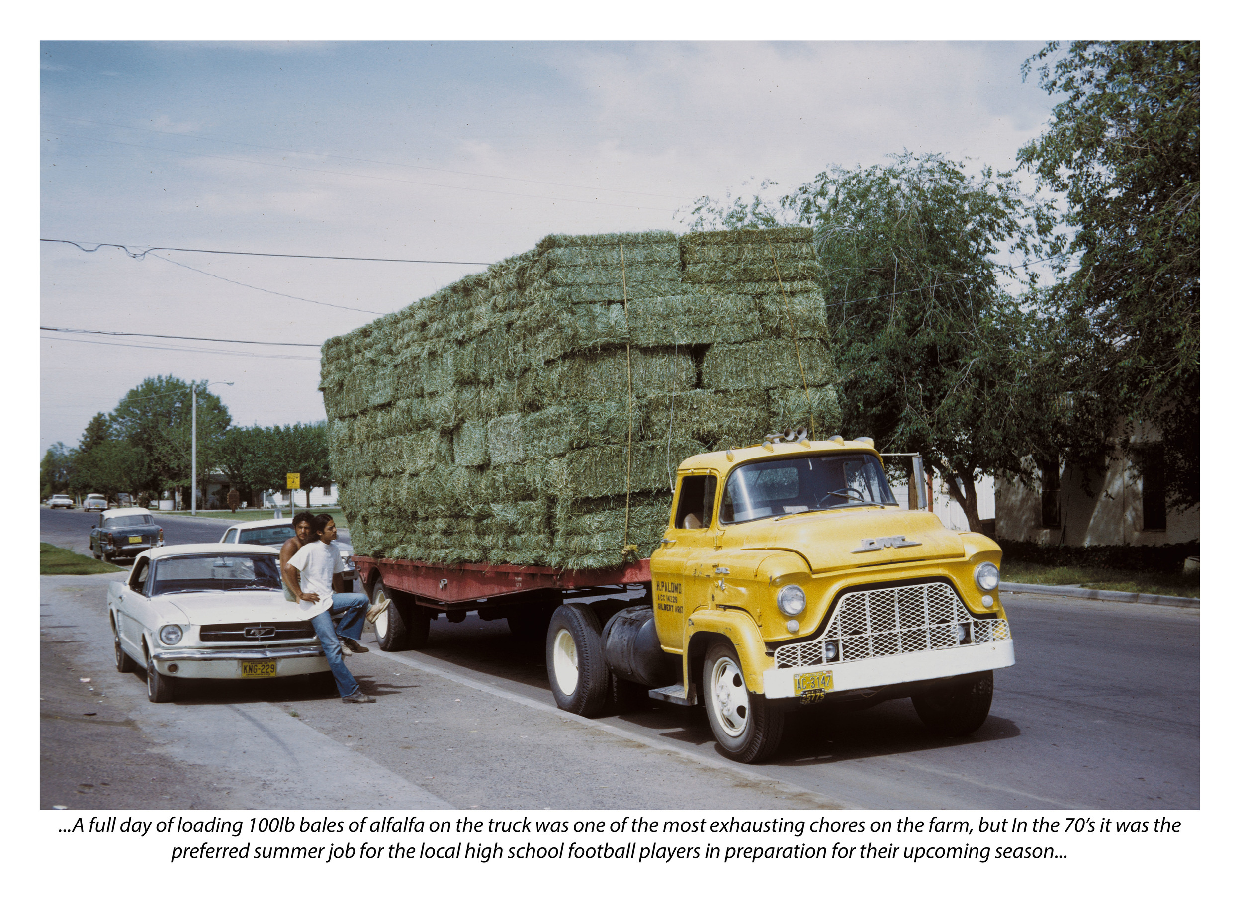 Bales on Truck (with photograph by Marvin Morrison)   Pigmented Inkjet Print with Text © 2013, Gina DeGideo