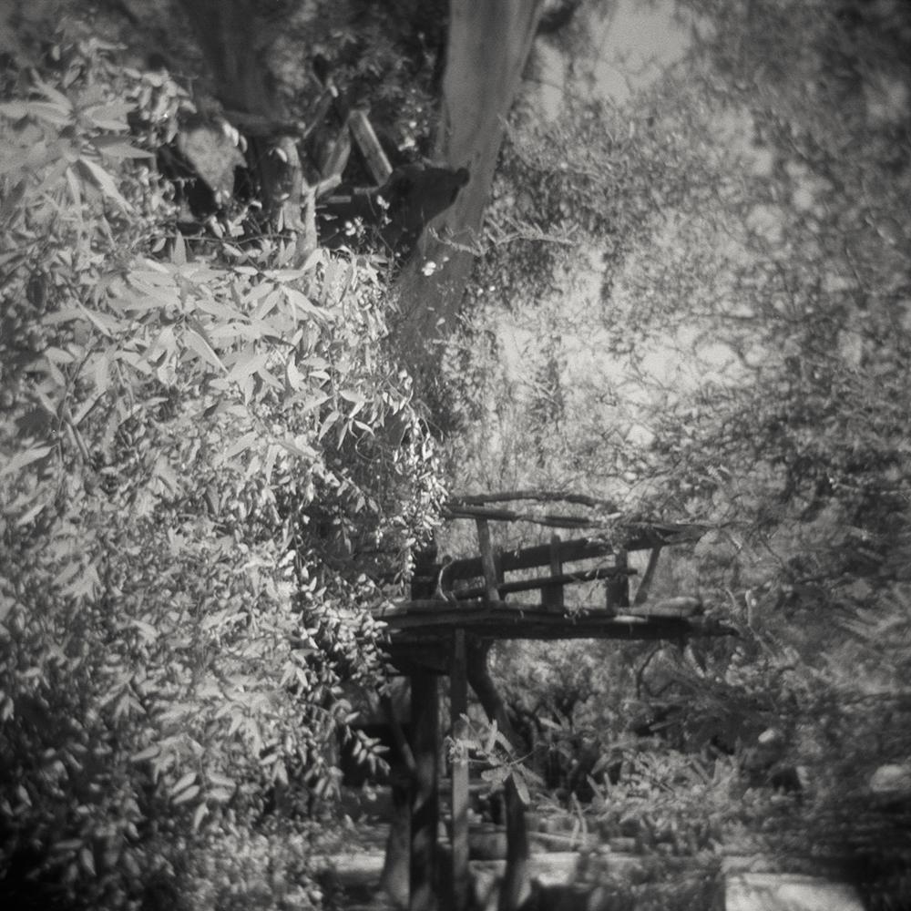 10/19 – Treehouse   Gelatin Silver Print on Ilford Warmtone Fiber Paper © 2015,Gina DeGideo